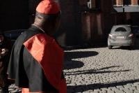 Kardinal i farta